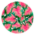 Caladium Pink